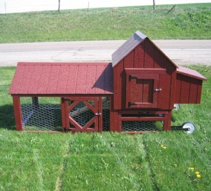 Berlin Chicken Coop